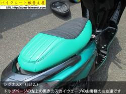 シグナスX (SE12J)