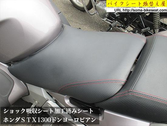ホンダSTX1300ドンヨーロピアン2